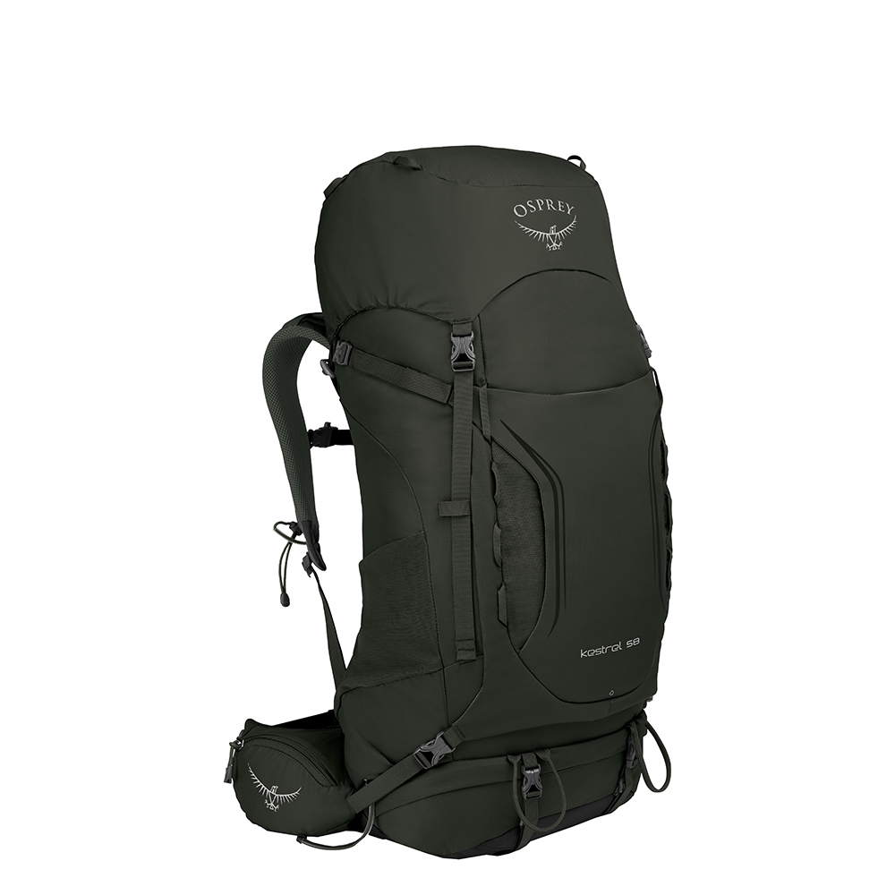 Osprey Kestrel 58 Backpack M/L picholine green backpack